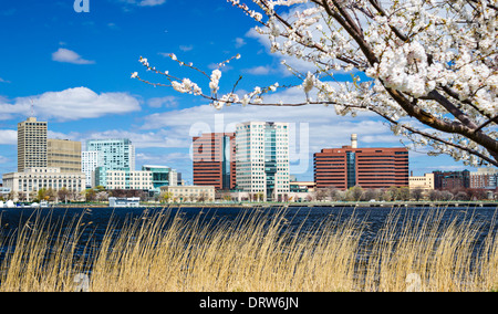 Cambridge, Massachusetts skyline in the spring. - Stock Photo