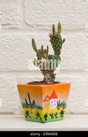 Small cactus in a brightly coloured pot against an offwhite wall. - Stock Photo