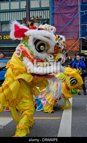 VANCOUVER, BC, CANADA, Chinatown - February 2, 2014.  Colourfully costumed performers practice the traditional Lion - Stock Photo