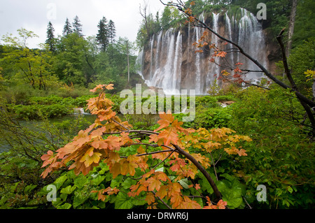 Plitvice Lakes, Waterfall, Forest, National Park, Croatia - Stock Photo