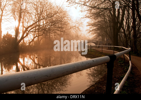 Oxford Canal and towpath, early morning. - Stock Photo