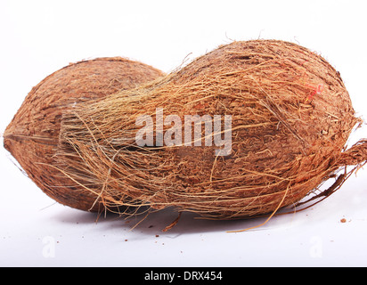 coconut on isolated background - Stock Photo