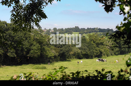 Countryside Landscape view. - Stock Photo