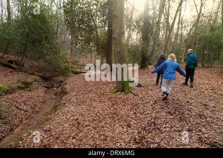 People walking in Burnham Beeches in  winter, - woods in Burnham, Buckinghamshire England UK