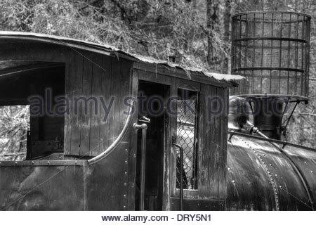 Steam powered locomotive, circa 1910, Algonquin Logging Museum, Algonquin Provincial Park, Ontario, Canada - Stock Photo