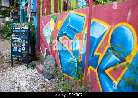 Colorful Graffiti In Back Alley Of Downtown Depicts An