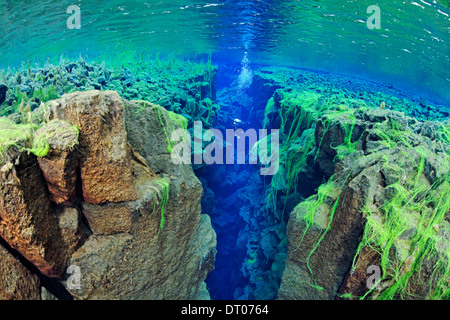 Silfa, the divergent tectonic boundary between the North American and Eurasian plates, Iceland - Stock Photo