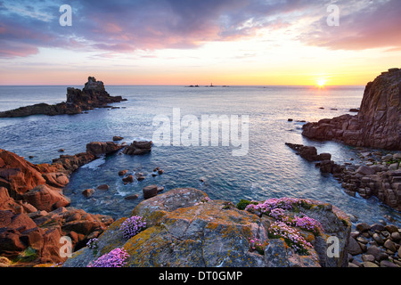 The sun setting at Land's End with thrift clinging to the rocks. - Stock Photo