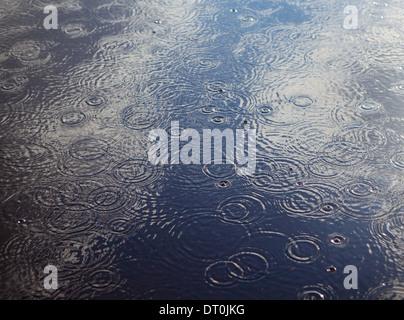 Washington state USA Rain drops and ripples on pool of water - Stock Photo