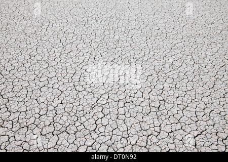 Black Rock Desert Nevada USA cracked desert surface Black Rock Desert Nevada - Stock Photo