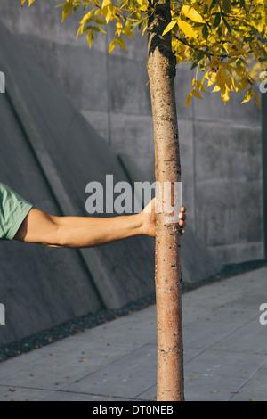 Seattle Washington USA Man holding small tree city sidewalk in background