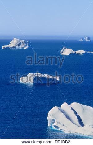 South Georgia Island Falkland Islands Icebergs floating on calm blue seas South Georgia - Stock Photo