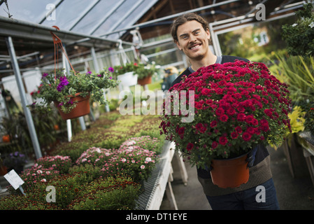 Organic Farmer at Work A young man holding a large pot of flowering plants - Stock Photo