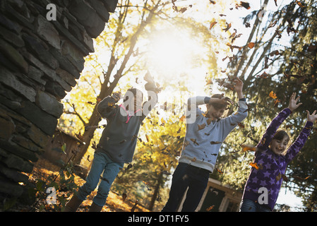 Three children in the autumn sunshine Playing outdoors throwing the fallen leaves in the air - Stock Photo