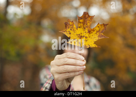Woodland in autumn A woman holding an autumnal leaf a maple leaf in her hand
