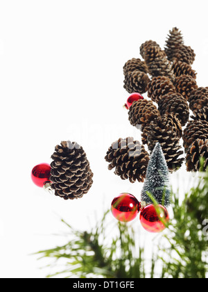 A pine tree branch with green needles Christmas decorations Pine cones and small red shiny ornaments - Stock Photo