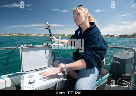 Scientist uses hydrophone to track tagged great white shark behaviour, Gaansbaai, Western Cape, South Africa - Stock Photo