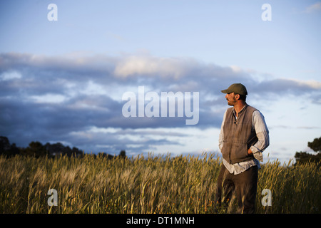 A man standing looking over the crops and fields at the Homeless Garden Project in Santa Cruz at sunset - Stock Photo