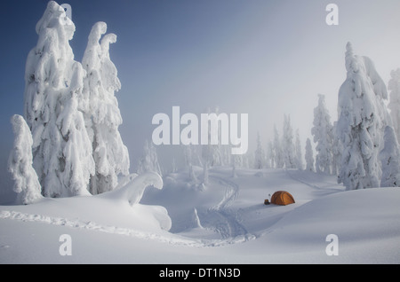 A bright orange tent among snow covered trees on a snowy ridge overlooking a mountain in the distance - Stock Photo