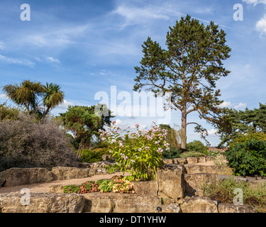 The Rock and Alpine Garden at Royal Botanic Garden, Kew Gardens, London, UK - Stock Photo