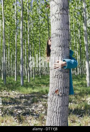 Ten year old girl peering behind commercially grown poplar tree on large tree farm near Pendleton - Stock Photo
