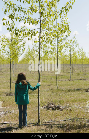 Ten year old girl standing next to commercially grown poplar tree on large tree farm near Pendleton Oregon - Stock Photo