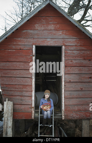 A girl sitting on the ladder of a henhouse with a basket of eggs - Stock Photo