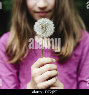 A ten year old girl holding a dandelion clock seedhead on a long stem - Stock Photo