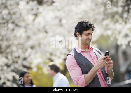 People outdoors in the city in spring time White blossom on the trees A young man checking his cell phone - Stock Photo