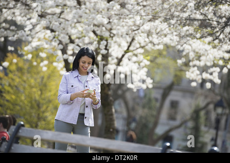 Outdoors in the city in spring time New York City park White blossom on the trees A woman holding her mobile phone - Stock Photo