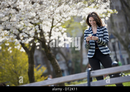 Outdoors in the city in spring time New York City park White blossom on the trees A woman standing checking her - Stock Photo