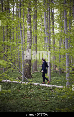 A woman walking along a fallen tree trunk in the woods Balancing on the narrow piece of wood - Stock Photo