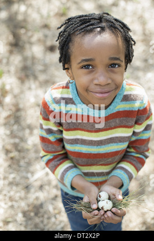 A small boy in a striped shirt holding a nest with three birds eggs - Stock Photo