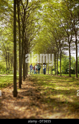 A group of friends walking down an avenue of trees in woodland - Stock Photo