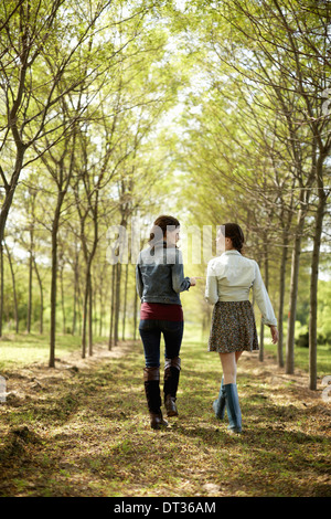 Two friends walking along a path through an avenue of trees