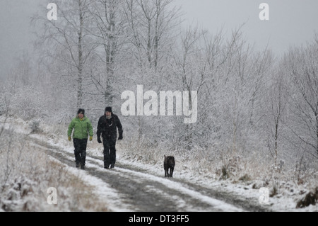 Snow cover forest track near Sherrifmuir, Stirling, Scotland. A couple walking a dog during a winter snow storm. - Stock Photo