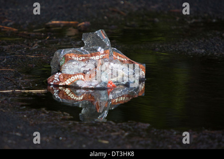 Bread wrapper left in puddle after feeding the birds in local park - Stock Photo