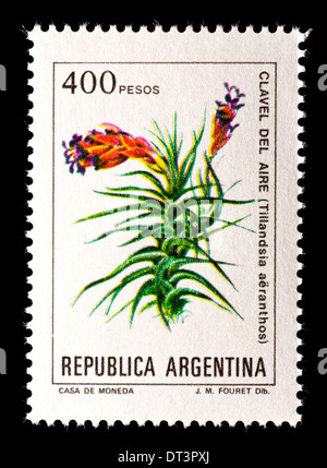 Postage stamp from Argentina depicting the flowers of Tillandsia aeranthus - Stock Photo