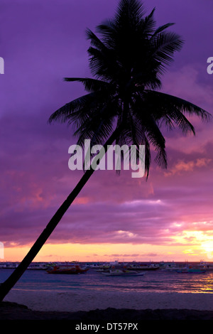 Colorful sunset on tropical beach with coconut palm trees - Stock Photo
