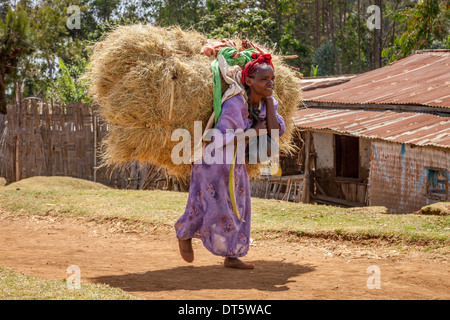 Women Arriving With Hay Bales At The Thursday Market In The Dorze Village Of Hayto, near Arba Minch, Ethiopia - Stock Photo