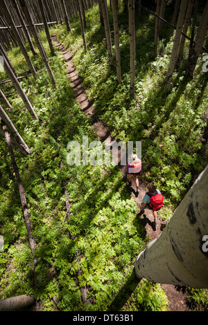 Couple hiking in forest, Beaver Ponds trail in the West Elk Mountains, Crested Butte, Colorado, USA - Stock Photo