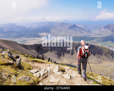 Hiker carrying a rucksack walking down Rhyd Ddu path on Bwlch Main with view south to Llechog from Mt Snowdon mountain - Stock Photo