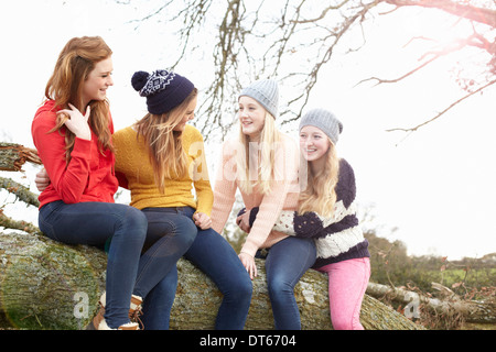 Four teenage girls sitting on top of tree trunk - Stock Photo