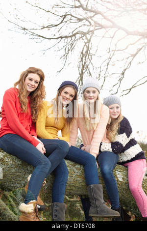 Four teenage girls sitting on tree trunk - Stock Photo