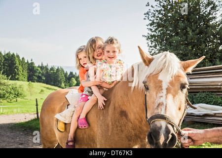 Three young girls sitting on palomino horse - Stock Photo
