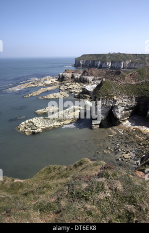Thornwick Bay and cliffs, North Yorkshire, UK - Stock Photo