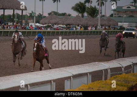 Hallandale Beach, Florida, USA. 9th Feb, 2014. Lea with jockey Joel Rosario upsets the field in the Donn Handicap(G1) - Stock Photo