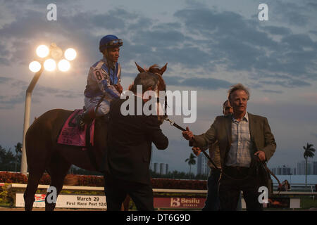 Hallandale Beach, Florida, USA. 9th Feb, 2014. Lea, jockey Joel Rosario and connections after winning the Donn Handicap(G1) - Stock Photo