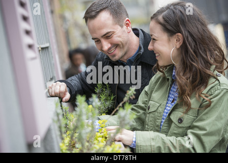 A man and a woman tending a window box on a city street. Spring flowers. - Stock Photo