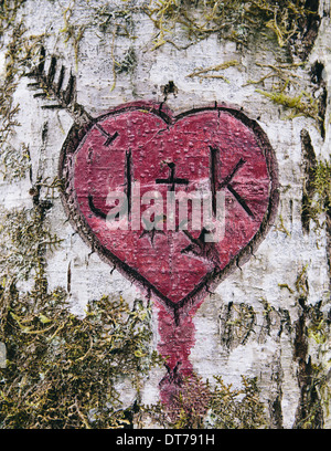J+K and heart symbol carved in moss covered Alder tree, Olympic NP - Stock Photo